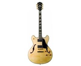 Washburn HB35N (CASE)  Guitarra Semi-acústica